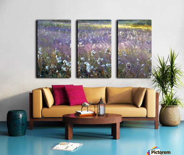 Dream Field Split Canvas print