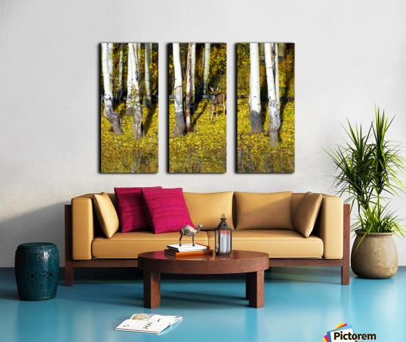 Baby Deer in Old Aspen Trees Split Canvas print