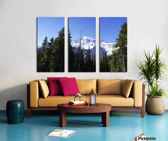 Mount Rainier Pacific Northwest Washington State Split Canvas print