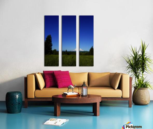 Mount Rainier at Sunset Pacific Northwest Washington State Split Canvas print