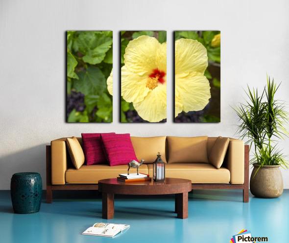 Yellow Hibiscus Tropical Flower Hawaii Split Canvas print
