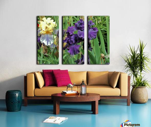 Two Iris Split Canvas print