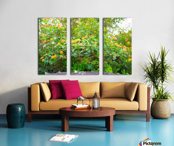 Wild Flowers Waimea Canyon Kauai Split Canvas print