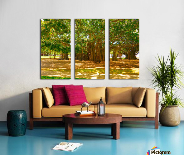 Waikiki Snapshot in Time 4 of 4 Split Canvas print
