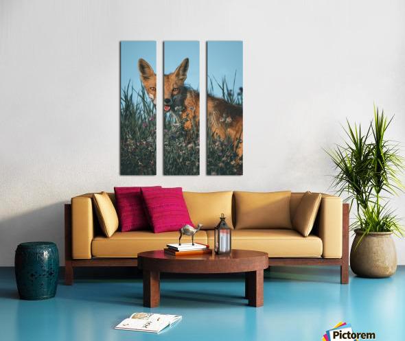 Fantastic Fox  Split Canvas print