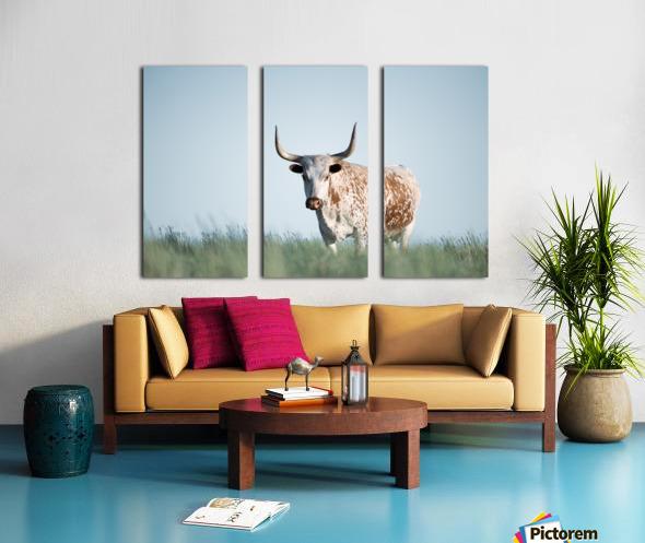 No Bull  Split Canvas print