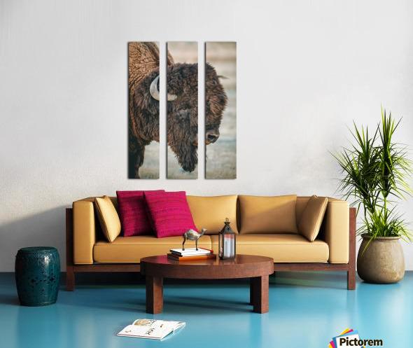 Cut the Bull Split Canvas print