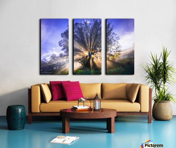 Rays of Light Split Canvas print