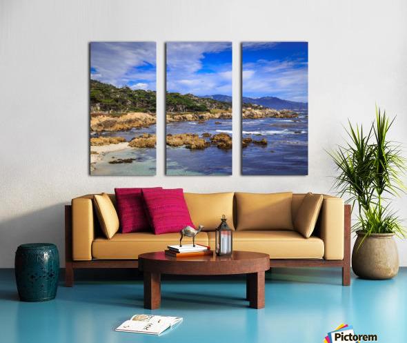 Carmel Coastline Split Canvas print
