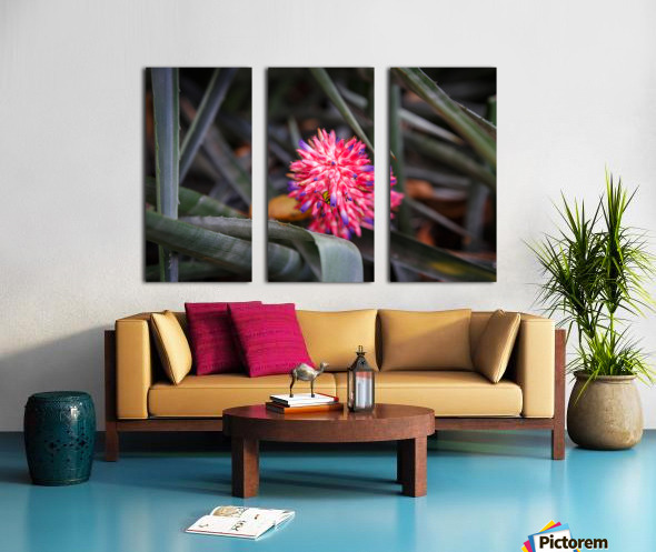 The Color Of Life Split Canvas print