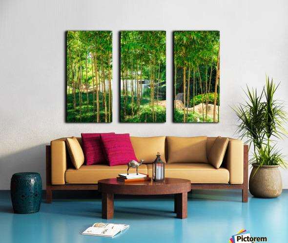 Bamboo Split Canvas print