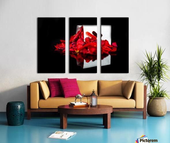 Rose Petals Split Canvas print