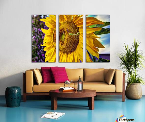 Sunflower Creative Split Canvas print