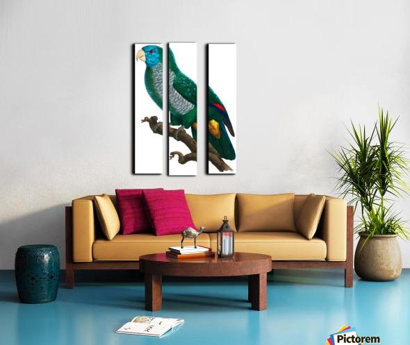Yellow and Green Parrot Art Print Digital Download Vintage French Bird Illustration Printable Coastal Tropical Wall Art Split Canvas print