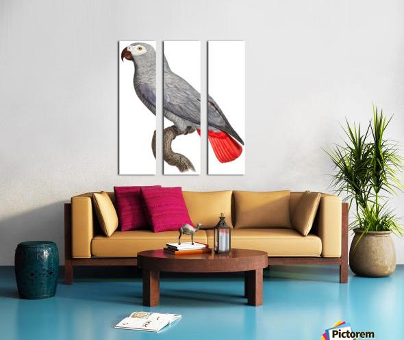 Parrot Print Art Poster with Parrot Parrot Wall Art for Bird Lovers Split Canvas print