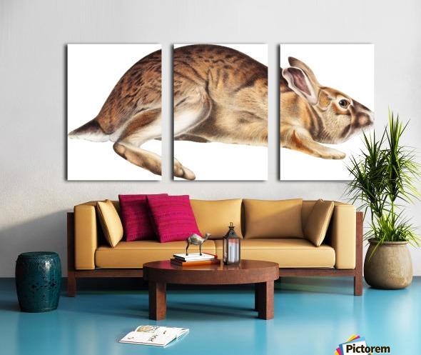 rabbit portrait   pet portrait   custom bunny portrait   custom dog portrait   animal lover gift   gift for her   gift for pet mom Split Canvas print
