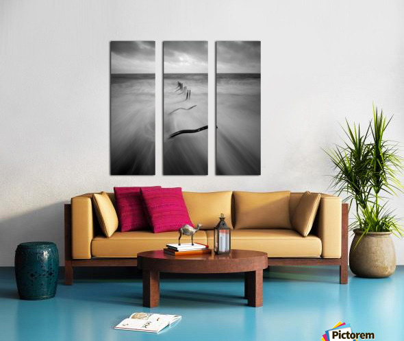 200113  P67 TRI X 002A Split Canvas print