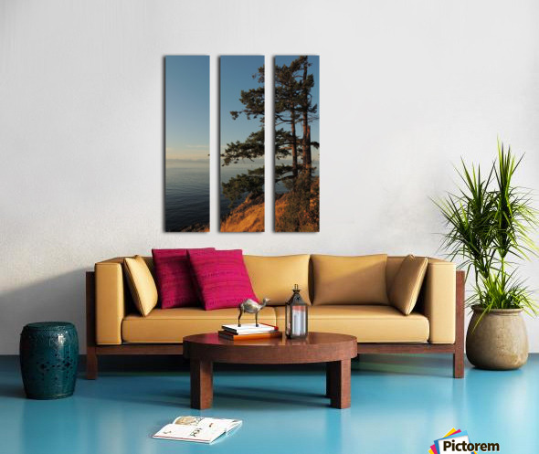 Standing Tall Split Canvas print