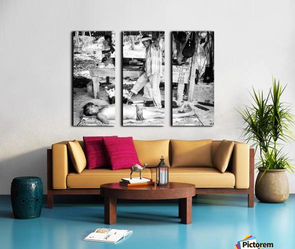 300s 1626000072.1251 Split Canvas print