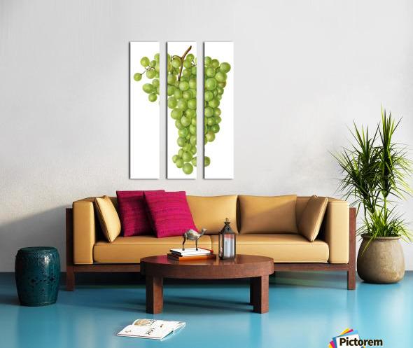 Green Grapes Wall Decor Vintage Botanical Poster Kitchen Art Split Canvas print