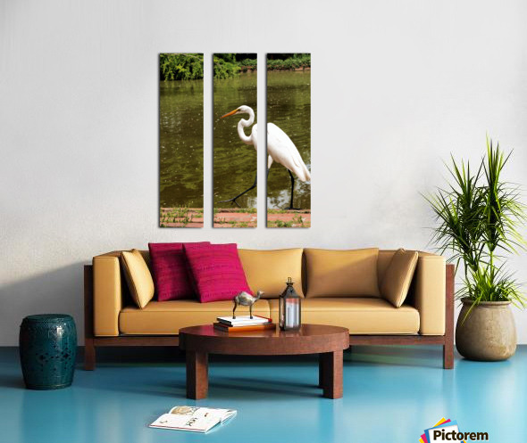Strutting Egret Split Canvas print