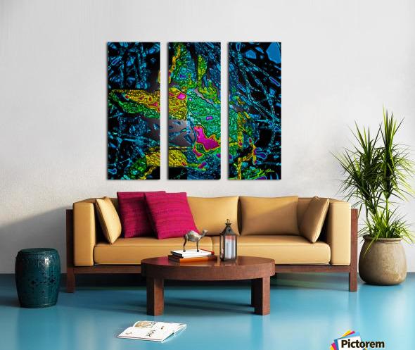 Tangled Transformation 6 Split Canvas print