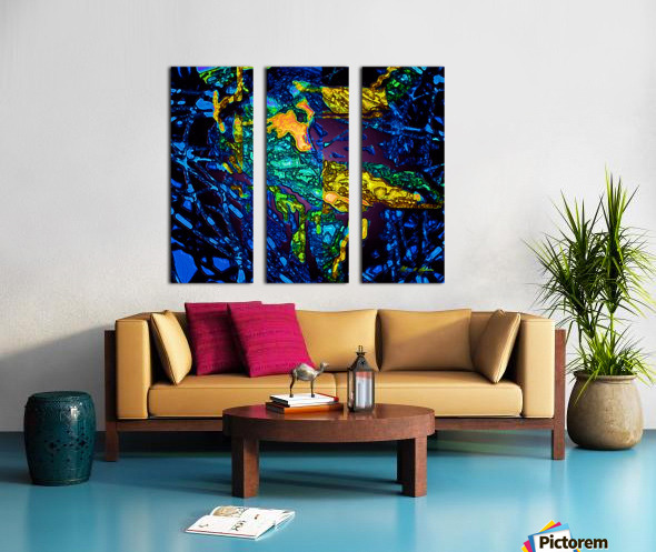 Tangled Transformation 3 Split Canvas print
