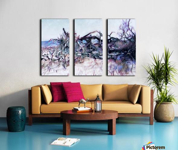 Driftwood Beach Split Canvas print