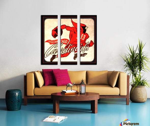 1956 Chicago Cardinals Viewfinder Slide Art Split Canvas print