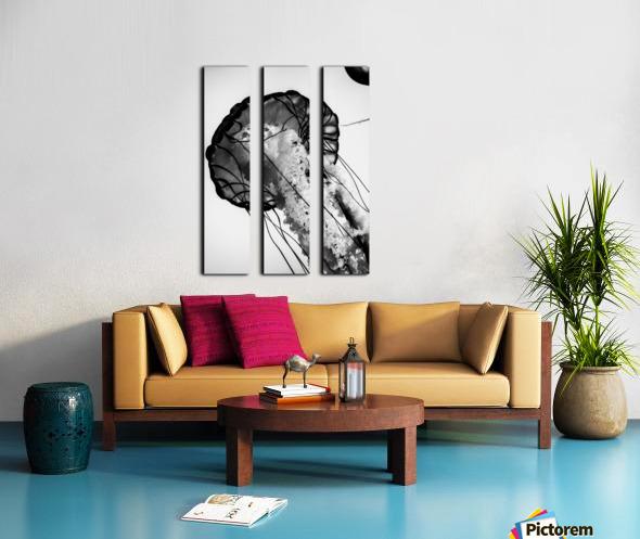 B&W Jelly Split Canvas print