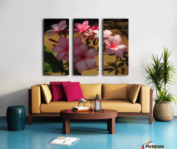 Pink Plumeria 2 Split Canvas print