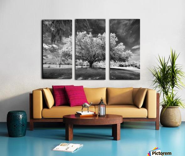 Gentle breeze Split Canvas print