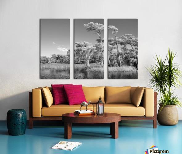 Blue cypress trees horizontal Split Canvas print