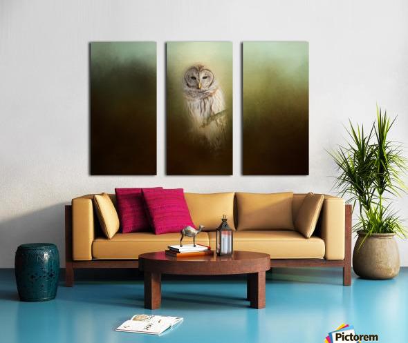 In The Quiet Split Canvas print