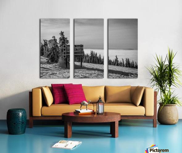 Quiet Ease Split Canvas print