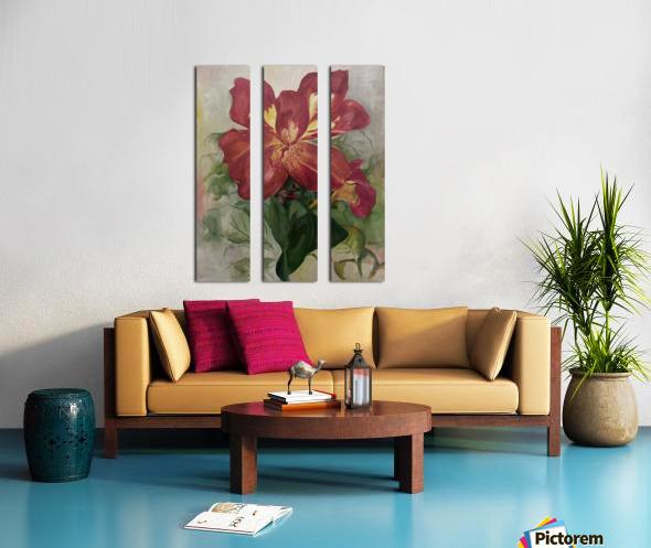 Canna Split Canvas print