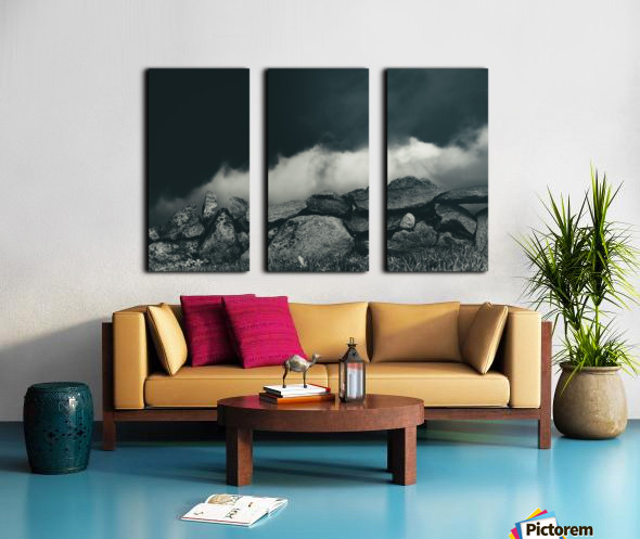 Behind The Wall Split Canvas print