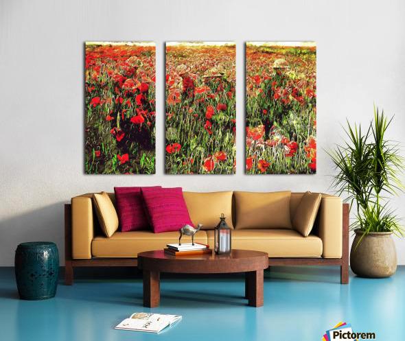 Hidden in the Poppy Fields Split Canvas print