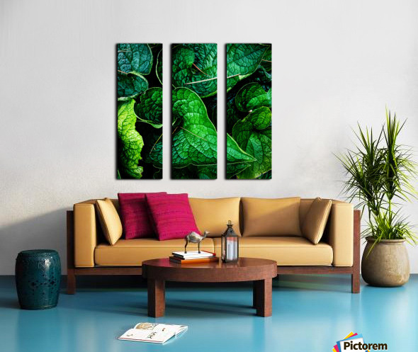 Garden Leaves Split Canvas print