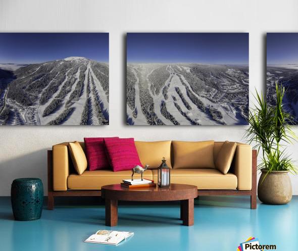 Mid Valley Split Canvas print