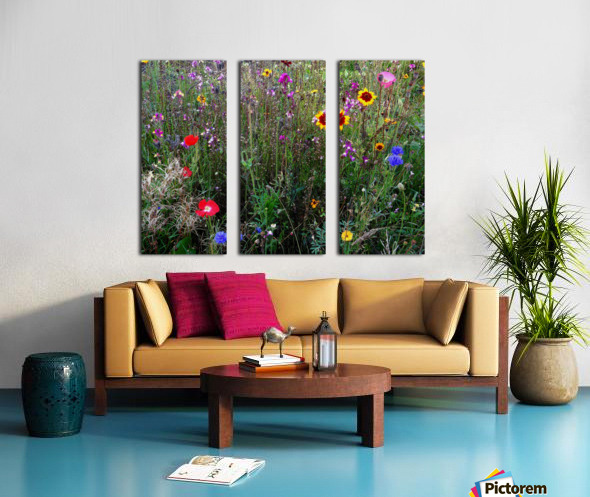 English Cottage Garden Flowers 2 Split Canvas print