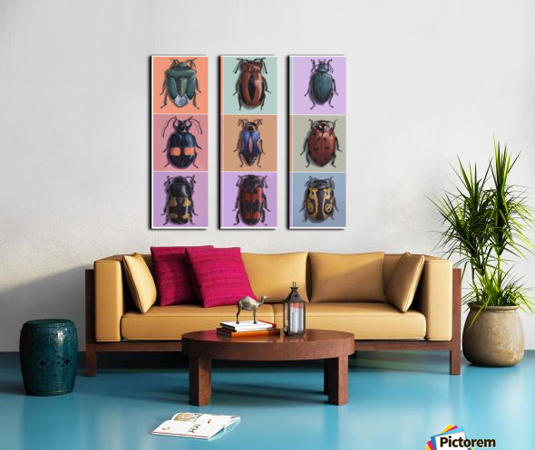 Assorted Beetles Split Canvas print