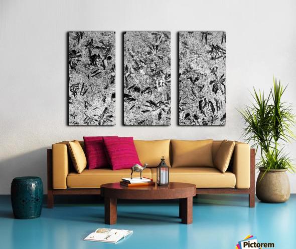 RA005 Split Canvas print