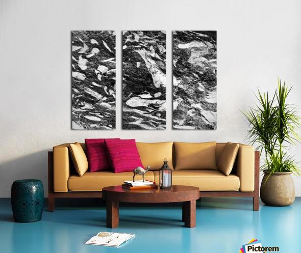 RA016 Split Canvas print