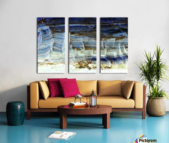 RA029 Split Canvas print