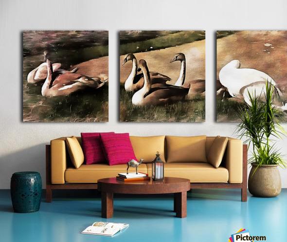 Swan Family Split Canvas print