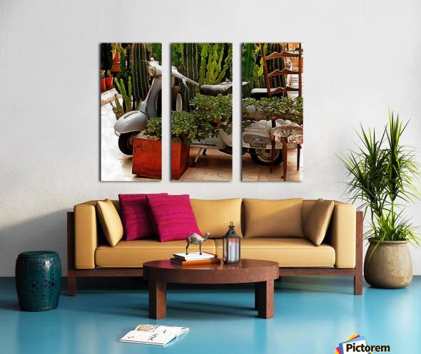 Vespa As Part Of Succulent Display Split Canvas print