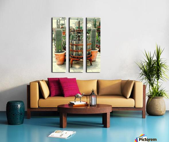 Old Wine Press Used in Succulent Display Split Canvas print