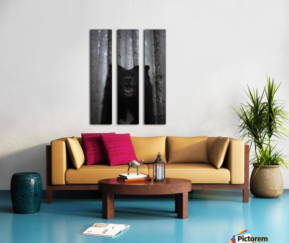 Home in forest  Split Canvas print
