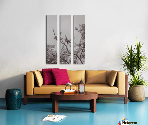 Couple of Parrots in the Top of a Tree Split Canvas print